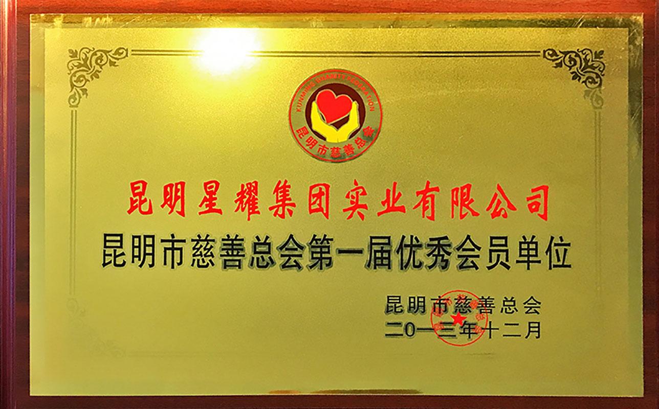 2013昆明市慈善总会第一届优秀会员单位