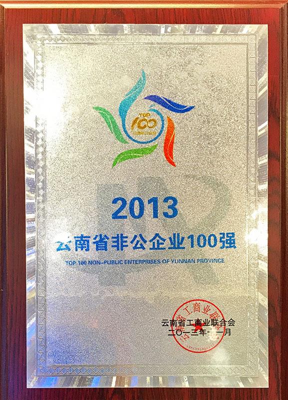 2013云南省非公企业100强