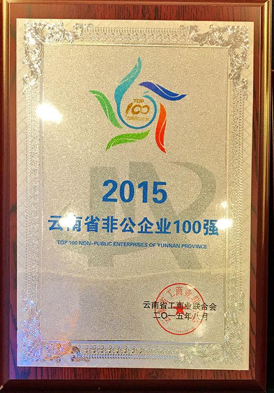 2015云南省非公企业100强